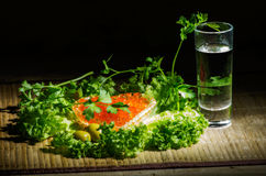 Vodka with red caviar. Still life with vodka, caviar, black bread, green olives, herbs and black bread Stock Photography