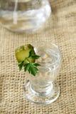 Vodka rusa Imagenes de archivo