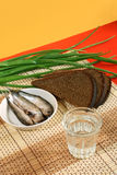 Vodka and Russian traditional appetizers. Spring onions, sprat and brown rye bread stock image