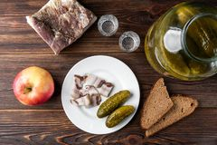 Vodka, salt pork fat, bread and pickled cucumbers on dark wooden background. stock photography