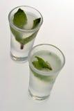 Vodka Shots. Liquor shots with mint stock images
