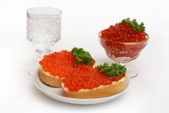Vodka y caviar rojo Fotos de archivo libres de regalías