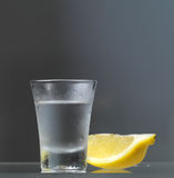 Vodkaexponeringsglas med citronskivan Royaltyfri Bild