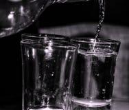Vodkashot& x27; s Royaltyfri Bild