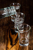 Vodkaskott Royaltyfria Bilder