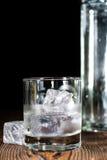 Vodkaskott arkivfoton