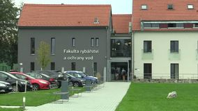 Vodnany, República Checa, o 2 de setembro de 2018: Construção da faculdade da pesca e da proteção de água das águas, video estoque