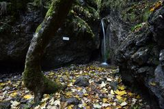 Vodopad de Skalny, dolina de Sokolia, raj de Slovensky, Eslováquia imagens de stock royalty free
