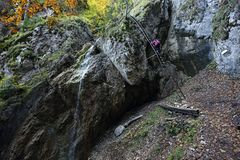 Vodopad de Zavojovy, dolina de Sokolia, raj de Slovensky, Eslováquia fotos de stock royalty free