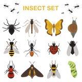 Voe a ilustração do vetor do ícone do zumbido da biologia do besouro da natureza animal do erro da entomologia dos animais selvag ilustração royalty free