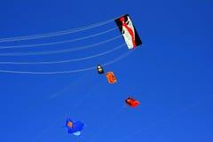 Voe um papagaio no céu azul do verão Fotografia de Stock