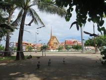 Voed de duiven tegenover de tempel het koninklijke klooster royalty-vrije stock foto's