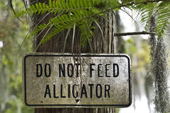 Voed geen Aligators stock afbeelding