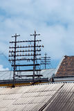 Voeder op een dak royalty-vrije stock afbeelding