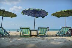 Voederbak die bij het strand dit keer ontspannen Stock Fotografie