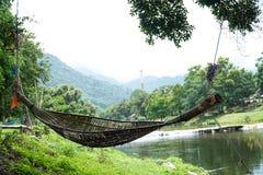 Voederbakken aan een boomrivier worden gebonden op de achtergrond die Stock Foto