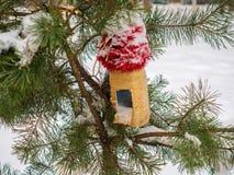 Voeders voor vogels op een tak met sneeuw wordt behandeld die Stock Foto