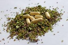 Voedingssupplementenpillen en capsules op droge kruidenachtergrond Alternatieve kruidengeneeskunde, naturopathy en homeopathie royalty-vrije stock fotografie