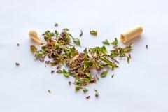 Voedingssupplementenpillen en capsules op droge kruidenachtergrond Alternatieve kruidengeneeskunde, naturopathy en homeopathie royalty-vrije stock foto