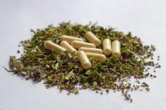 Voedingssupplementenpillen en capsules op droge kruidenachtergrond Alternatieve kruidengeneeskunde, naturopathy en homeopathie royalty-vrije stock afbeeldingen