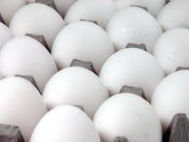 Voedsel: Eieren royalty-vrije stock foto