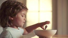 Voedsel en drank voor jonge geitjes Kinderjaren Portret van snoepje weinig lachende babyjongen die met blondehaar van plaat eten stock video