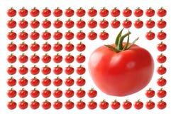 Voedsel, Groenten, Tomaat Royalty-vrije Stock Afbeeldingen