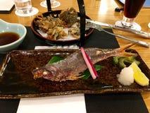 Voedsel Japanse vissen Stock Foto's