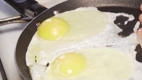 Voedsel, ontbijt die, pan, braadde, maaltijd, proteïne het koken, stock video