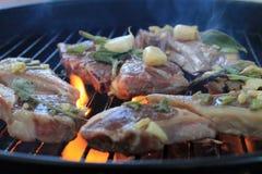 Voedsel op de grill Royalty-vrije Stock Afbeelding