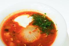 Voedsel op witte achtergrond wordt geïsoleerd die Royalty-vrije Stock Foto