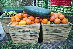 Voedsel, pompoen royalty-vrije stock afbeeldingen