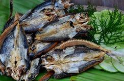 Voedsel van de Filippijnen, Bangsi, gemarineerde vliegende vissen Stock Foto