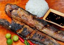 """Voedsel van de Filippijnen, """"Sinugbang Hito†, geroosterde katvis Stock Fotografie"""