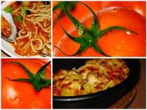 Voedsel van tomaat Royalty-vrije Stock Foto's