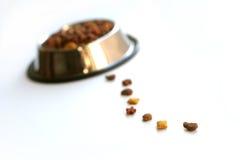 Voedsel voor huisdieren Royalty-vrije Stock Afbeeldingen