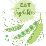 Voedselcitaten Eet uw groenten Gezond biologisch product Royalty-vrije Stock Afbeeldingen