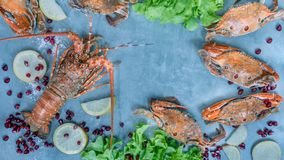 Voedselkader met schaaldier royalty-vrije stock foto