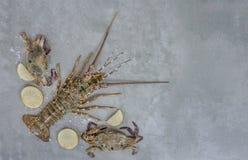Voedselkader met schaaldier stock fotografie
