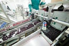 Voedselverpakking Stock Fotografie
