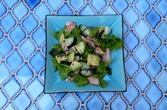 Voedzame gezonde lunch Stock Foto's