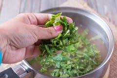 Voeg greens aan de soep toe Stock Afbeelding