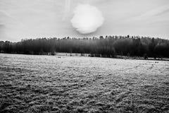 Voeltendorf在冬天 库存图片
