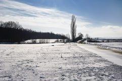 Voeltendorf in de winter Stock Afbeelding