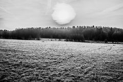 Voeltendorf en hiver Image stock