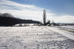 Voeltendorf w zimie Obraz Stock