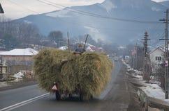 Voerman met hooi op de weg in Bucovina Royalty-vrije Stock Foto's