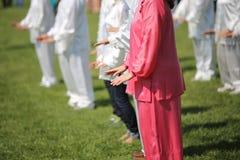 Voert de krijgs de kunstvrouw van Tai Chi met roze zijdekleding exerc uit Stock Afbeeldingen