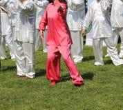 Voert de krijgs de kunstvrouw van Tai Chi met roze zijdekleding exerc uit Royalty-vrije Stock Afbeelding