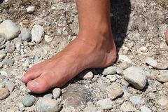 voet stock foto